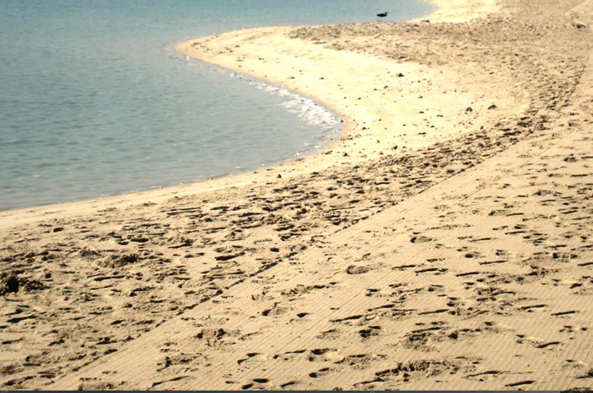 Beach Cleaning UAE
